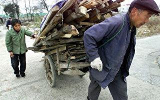 彭博社:中国老龄化危机犹如一颗定时炸弹