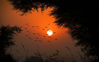 童話:大地的眼睛(七)黑夜的邊上