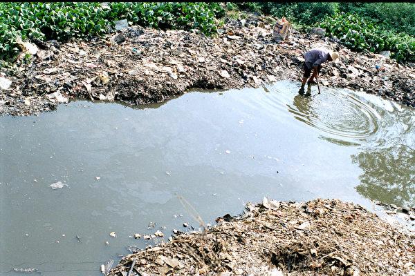 貧窮的民工在污穢的垃圾堆裏尋找可以回收的物品變賣。(綠色和平提供)
