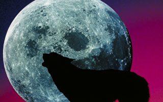 滿月的別稱何其多