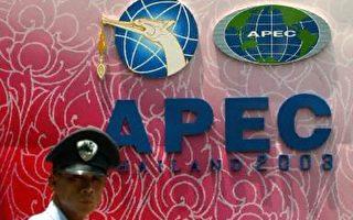 经济和反恐越来越被关注,也是2003年度泰国APEC会议的两大议题(法新社图)