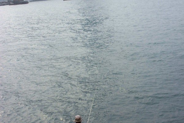 不少钓鱼人士都会在维港沿岸垂钓。中区第三期填海工程的范围包括前面这片汪洋合共廿三公顷面积。(大纪元记者摄)