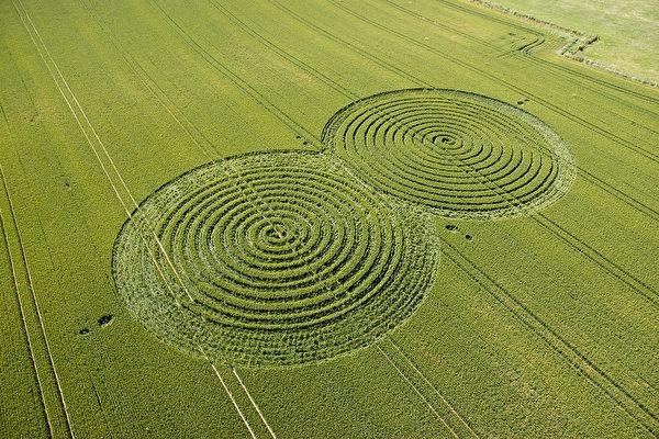 2004年6月10日在英国Hampshire的Porchester瞬间成形的麦田圈(Courtesy of Steve Alexander www.temporarytemples.co.uk)