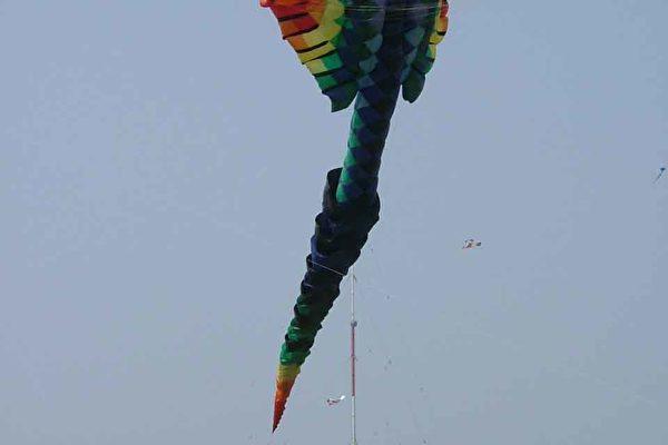 25米长的特大风筝(大纪元)