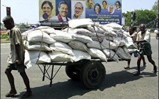 斯里兰卡总统大选 游击队动向可能左右选情