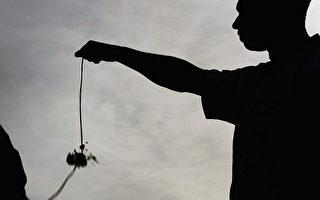 趣味国际坚果锦标赛在英国举行