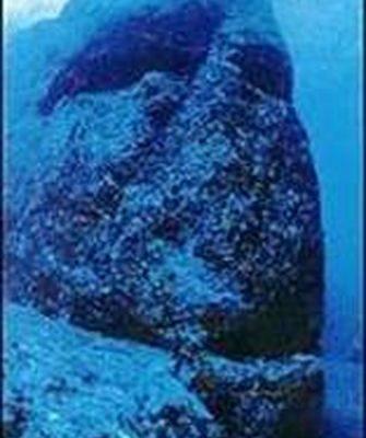 与那国岛海底高达数公尺的人头雕像(图片提供:木村政昭教授)