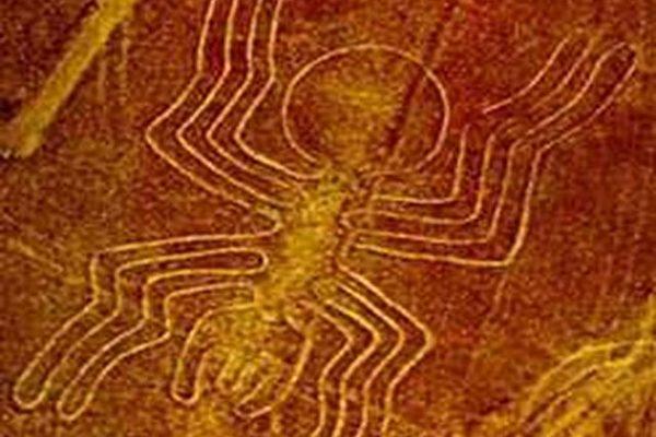 以一条单线砌成46公尺长的蜘蛛图,据估计每砌成一条线条需要搬运几吨重的小石头(图片提供:Peru Expeditions)