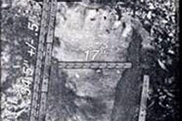 美国堪萨斯州发现的长达近90公分的巨人脚印(图片提供:Floyd M. Gurley)