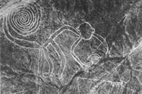 那斯卡的猴子图(图片提供:Peru Expeditions)