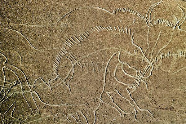 法國多爾多省屈薩克(Cuss)一個史前洞穴估計有三萬年歷史的石刻巖畫。(法新社)
