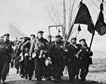 反共志愿军战俘们走出中立区(作者提供)。