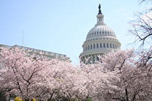 美国国会大厦 (大纪元记者丽莎摄影)