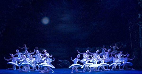 天鹅湖群舞(英国国家芭蕾舞蹈团提供)