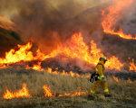 南加州森林大火/ by David McNew/Getty Images