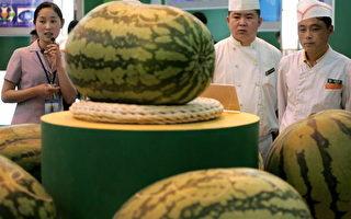 研究指冰箱儲存西瓜將破壞營養成分