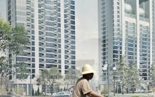 专家:中国房地产是最大灰犀牛 或触发金融危机