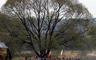 10月15日,在俄罗斯的小雅罗斯拉韦茨(MALOYAROSLAVETS),人们扮成法国骑兵再现1812年俄法战争的战斗场面。(Photo credit should read DENIS SINYAKOV/AFP/Getty Images)
