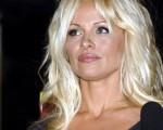 潘蜜拉安德森 Pamela Anderson  (Photo by John M. Heller/Getty Images)