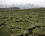 3月2日重慶市乾裂的長江河床。(Photo by China Photos/Getty Images)