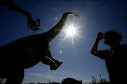 亿年恐龙化石阿根廷出土 骨骼完整无缺