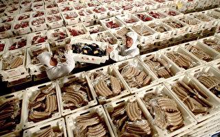中国有毒食品和产品出口引国际紧张