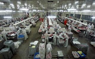 国际舆论压力下 中国180食品厂遭关闭