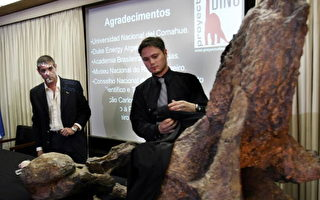 阿根廷出土新种恐龙化石 高达四层楼
