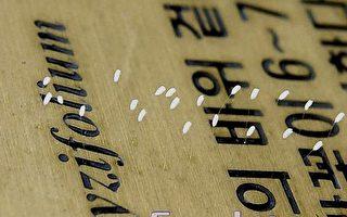 韓國首爾西部地方層庭院中另一個銅質標誌牌上,上下兩處開了7~9朵5~8毫米的優曇婆羅花。 (攝影:金國煥/大紀元)