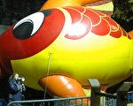 梅西感恩大游行前夜(21日﹐星期三)﹐工作人员在向前来中央公园参观巨型气球充气的民众解说。(摄影 文怡/大纪元)