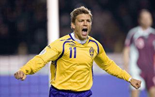瑞典晋级2008欧足赛 表现北欧最佳