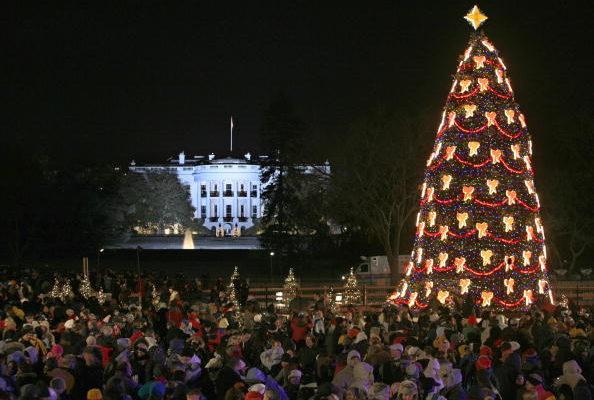 聖誕樹面臨缺短  價格飆漲