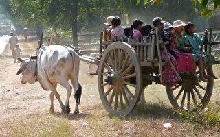 缅甸经济危机 民不聊生民怨沸腾