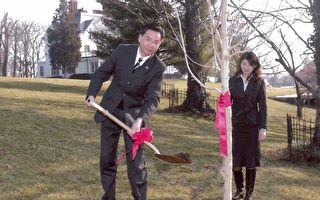 吴钊燮代表于植树节前夕在华府双橡园手植枫树乙株