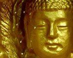 韩国全罗南道顺天市海龙面的须弥山禅院的佛像上长出优昙婆罗花。(大纪元)