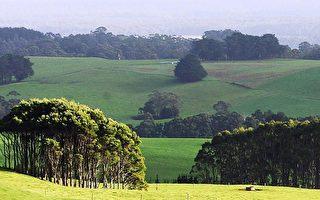中共长臂伸向澳洲偏远地区 学者吁塔州警惕