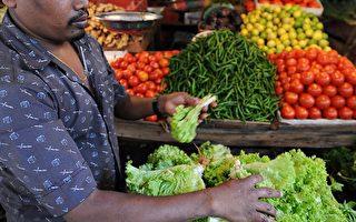 抗氧化剂通常存在于天然的食物中,每天均衡摄取绿、黄、橘、红、紫、白等五种健康颜色的食物,你就可以得到充分的抗氧化剂,达到保持年轻健康的效应。(Photo credit should read Ishara S. KODIKARA/AFP/Getty Images)