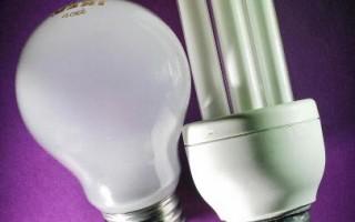 美国环保署也要求加强在节能灯对健康和环境影响方面的研究和资讯分享。图为两款节能灯泡。(Jon ENOCH/AFP/Getty Images)