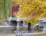 波士頓花園秋色正濃  (攝影:楊天儀/大紀元)