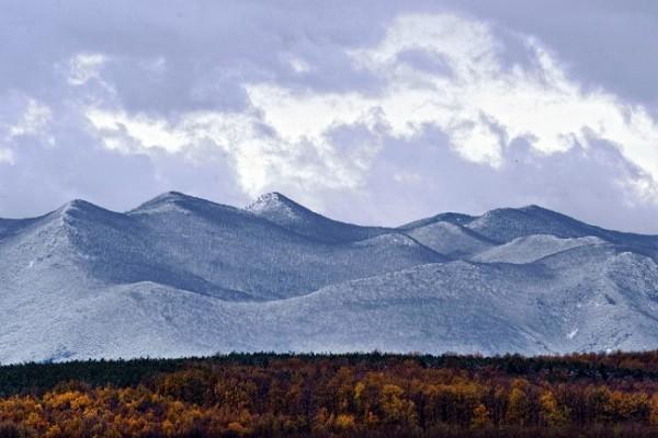 高風催過雲 小雪閒中過——小雪節氣到