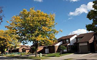 加拿大房屋买卖地产问答专栏(64)