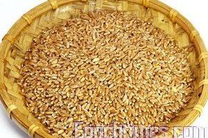 食材小竅門:神奇小麥(一)珍貴的穀物