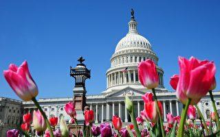 美國國會眾議院5月2日以多數票通過制裁議案,支持川普(特朗普)政府對朝鮮政權採取更嚴格的措施。圖為華盛頓美國國會大廈(法新社)