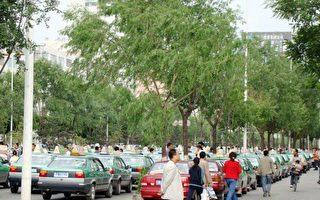 組圖:牡丹江全市出租車司機大罷工已第8天