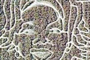 圖:亞利桑納的「麥田怪圈」,看起來更像名嘴奧普拉的臉。(網絡圖片)