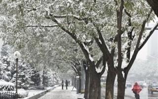 北京连降三场大雪 天降还是人为?