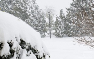 大风雪覆盖下的维吉尼亚州 (摄影:李莎 / 大纪元)