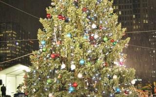 費城點亮聖誕樹 節日氣息漸濃