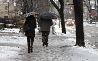 安省第一場雪暴後的通勤變得很糟。(摄影:穆枫/大纪元)