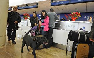安檢升級 多倫多機場擁擠 班機延誤
